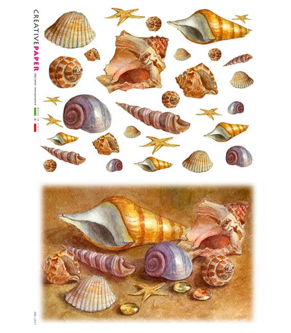 Decoupage rice paper: Shells