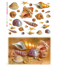 Decoupage rice paper: Shells and sea