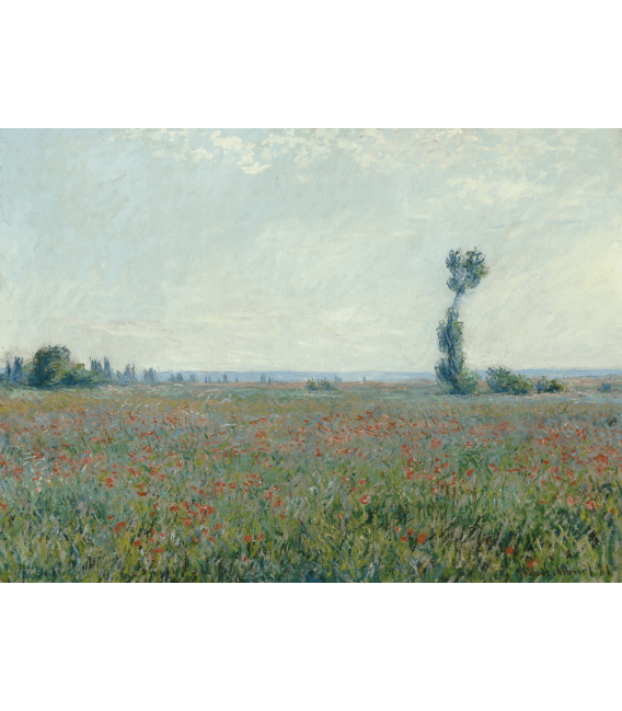 Printing on canvas: Claude Monet - Field of Poppies