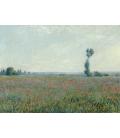 Claude Monet - Campo di papaveri. Stampa su tela