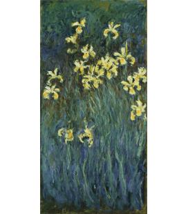 Claude Monet - Iris gialli. Stampa su tela