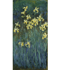 Claude Monet - Yellow Iris. Printing on canvas