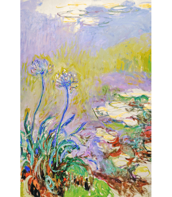 Printing on canvas: Claude Monet - The Agapanthes