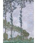 Claude Monet - Pioppi, effetto vento. Stampa su tela