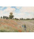 Stampa su tela: Claude Monet - Poppy Field, Near Argenteuil