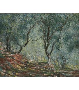 Stampa su tela: Claude Monet - Ulivi al giardino Moreno