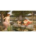 John William Waterhouse - Eco e Narciso. Stampa su tela