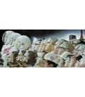 Norman Rockwell - Dalla terra alla luna. Stampa su tela