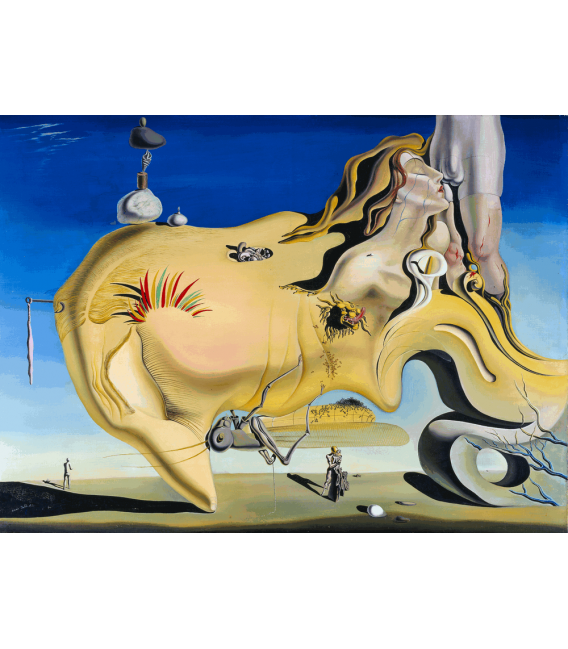 Printing on canvas: Salvador Dalí - The Great Masturbator