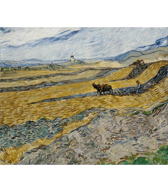 Stampa su tela: Vincent Van Gogh - Campo chiuso con aratro