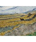 Vincent Van Gogh - Campo chiuso con aratro. Stampa su tela