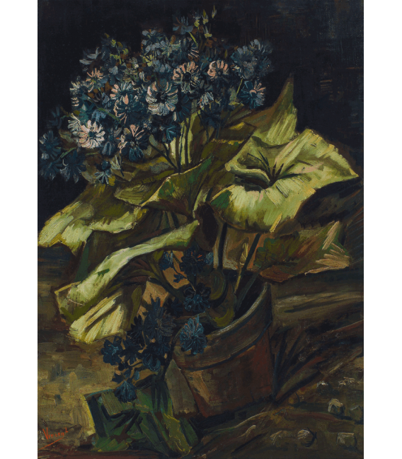 Printing on canvas: Vincent Van Gogh - Cineraria