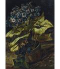 Vincent Van Gogh - Cineraria. Stampa su tela