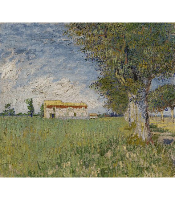 Printing on canvas: Vincent Van Gogh - White Cottage in the olive trees