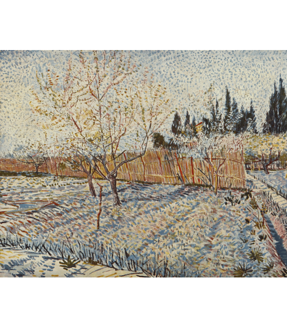 Printing on canvas: Vincent Van Gogh - Orchard with cypress