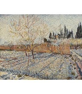 Vincent Van Gogh - Frutteto con cipressi. Stampa su tela