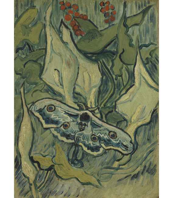 Printing on canvas: Vincent Van Gogh - Butterflies