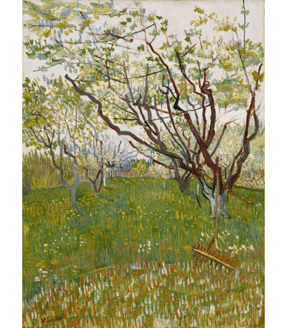 Printing on canvas: Vincent Van Gogh - Orchard in bloom