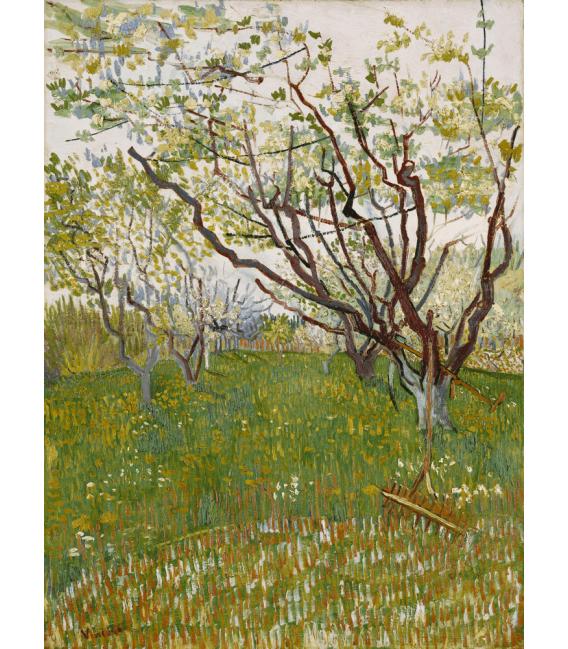 Stampa su tela: Vincent Van Gogh - Frutteto in fiore