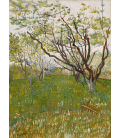 Vincent Van Gogh - Orchard in bloom. Printing on canvas