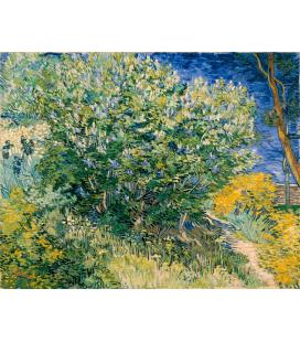 Vincent Van Gogh - Mandorlo in fiore. Stampa su tela