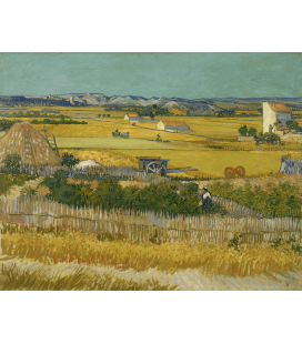 Vincent Van Gogh - La vendemmia. Stampa su tela