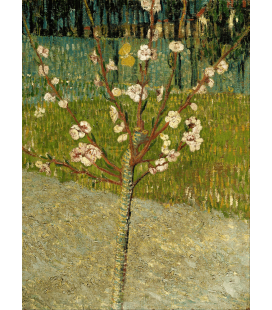 Vincent Van Gogh - Almond Blossom 2. Printing on canvas