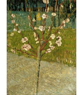 Vincent Van Gogh - Mandorlo in fiore 2. Stampa su tela