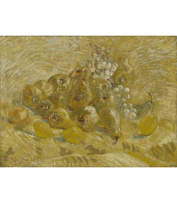 Printing on canvas: Vincent Van Gogh - Still Life with Grapes