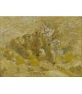 Stampa su tela: Vincent Van Gogh - Natura morta con uva, pere e limoni