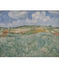 Vincent Van Gogh - Pianura di Auvers. Stampa su tela
