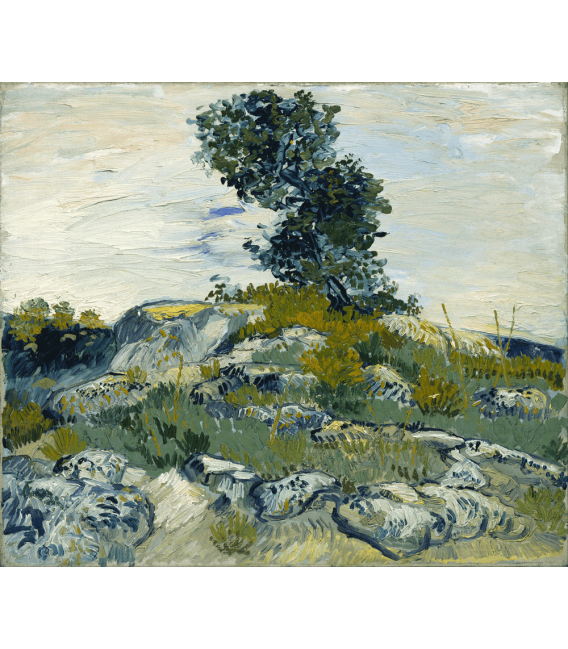 Printing on canvas: Vincent Van Gogh - Rocks