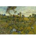 Vincent Van Gogh - Tramonto a Montmajour. Stampa su tela