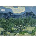 Vincent Van Gogh - Olive Trees 2. Printing on canvas