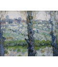 Vincent Van Gogh - Vista di frutteti in fiore ad Arles. Stampa su tela