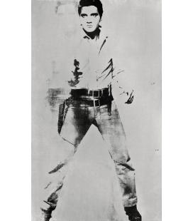 Andy Warhol - Double Elvis. Stampa su tela