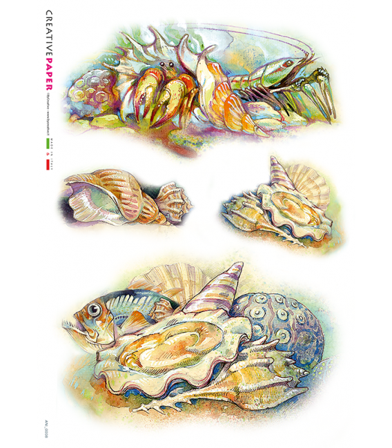Decoupage rice paper: Crabs, Shells and Fishes. Painted