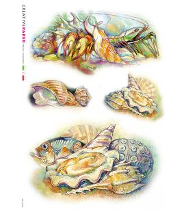 Carta di riso Decoupage: Granchi, Conchiglie e Pesci. Dipinte