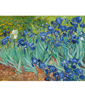Vincent Van Gogh - Irises. Printing on canvas