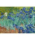 Vincent Van Gogh - Irises. Printing on canvas