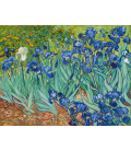 Stampa su tela: Vincent Van Gogh - Gli iris