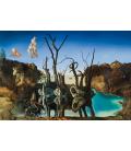 Salvador Dalì - Cigni riflessi in Elefanti. Stampa su tela