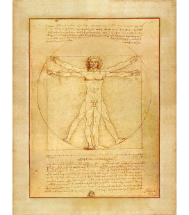 Leonardo Da Vinci - The Vitruvian man. Print on canvas