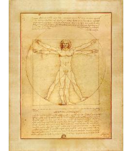 Leonardo Da Vinci - The Vitruvian man. Print on canvas
