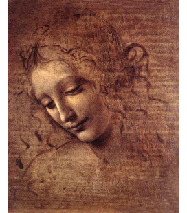Leonardo Da Vinci. Female Head. Printing on canvas