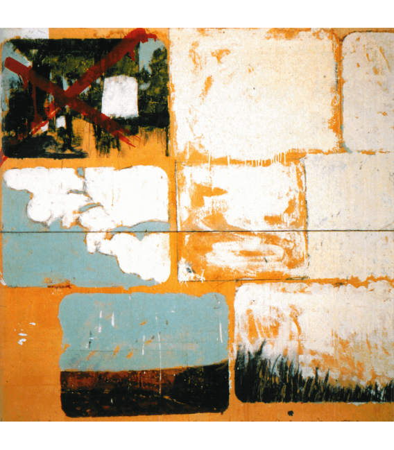 Mario Schifano - Smalto su Carta. Stampa su tela
