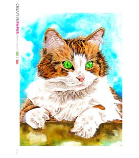 Decoupage rice paper: Painted Cat