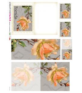 Carta di riso per decoupage CARD-0005