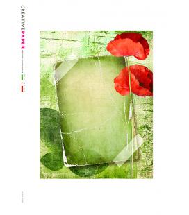 Carta di riso per decoupage ALBUM_G_0006