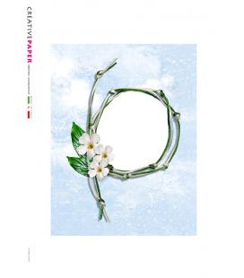 Carta di riso per decoupage ALBUM_G_0037